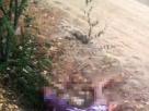 Corpo com corda amarrada no pescoço e marcas de tiro é encontrado no interior da Bahia