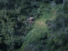 Dono da fazenda onde quatro toneladas de maconha foram apreendidas é preso no sul da Bahia